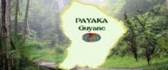 PAYAKA Guyane
