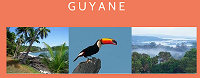 Guyane Culture et Tradition